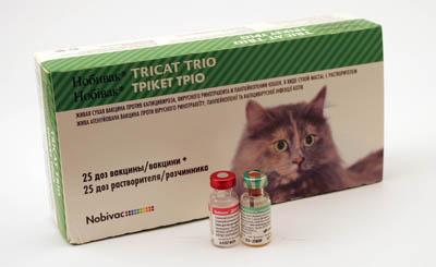 дерматомикоз лошадей вакцина